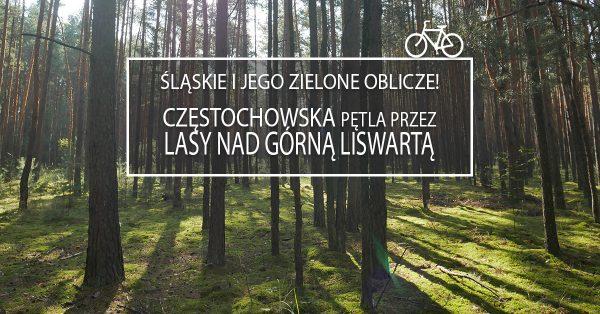Częstochowska pętla przez Lasy nad Górną Liswartą