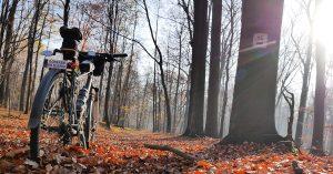 Lasy Murckowskie na rowerze