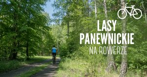 Lasy Panewnickie na rowerze