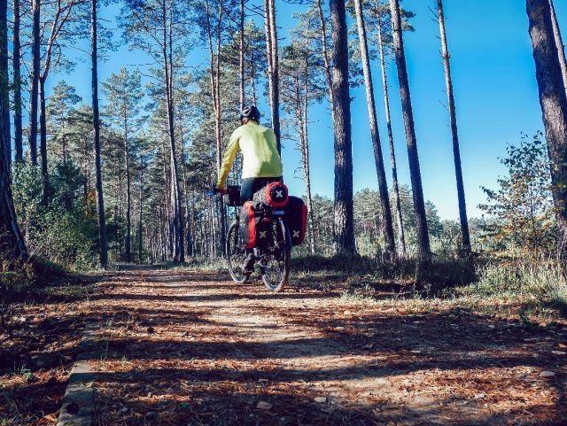 #rowerempośląsku #roweremposlasku #autumn #autumn2021 #october #jesień #barwyjesieni #sun #las #leśnedrogi #wyprawka #wyprawarowerowa #travel #podróże #podróżemałeiduże #podróżerowerowe #sciezkarowerowa #natura #naturalovers #Kaszuby #kaszubskamarszruta #rowerowo #bikelife #biketrip #sakwiarze #krossbikes