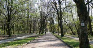 Czerwony szlak rowerowy nr 103 w Katowicach